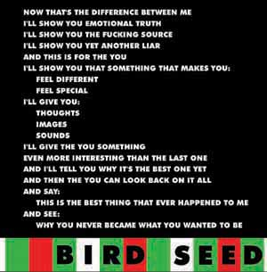 Bird Seed cover artwork
